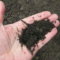 Готовим почвосмесь для рассады