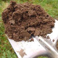 земля лопата