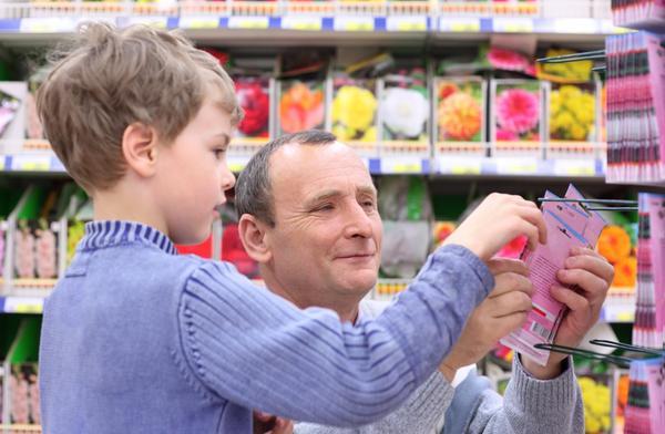 Что важно знать при покупке семян в магазинах