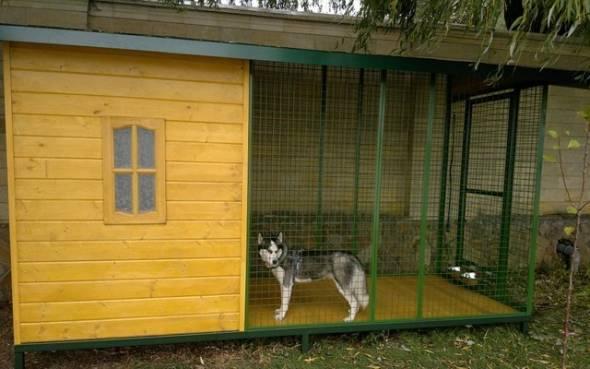 Вольер для собаки: где разместить и как построить