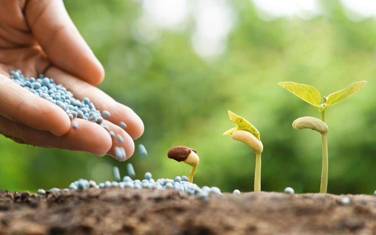 Удобрения и микроудобрения для растениеводства