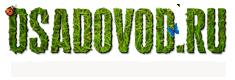 Osadovod — Все о садe, огороде и дизайне